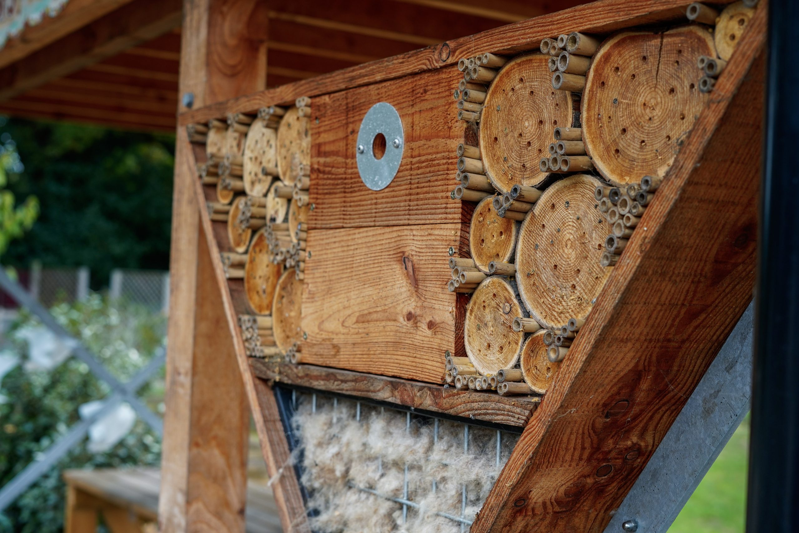 a bug hotel and solitary bee house at Growing Together Thundersley