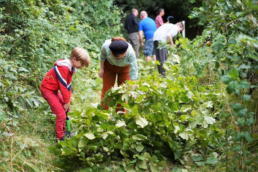 Young people coppicing